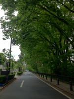 20120624-011222.jpg